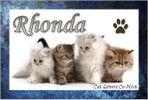 Rhonda Sievers