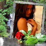 Odessa Rose