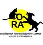 ORA AnimalRescue