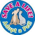 Barkforlife Petition