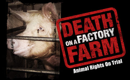 New HBO Film Exposes Animal Abuse in Factory Farms, Airs March 16