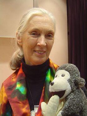 Send Jane Goodall A Birthday Card