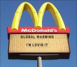 mcdonalds destroying the environment