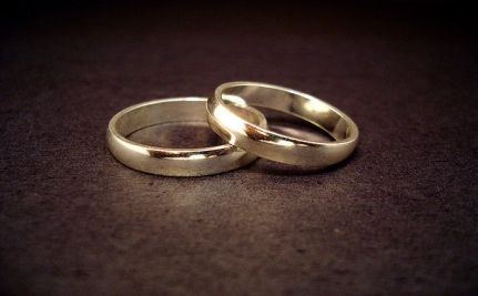 Indiana's Marriage Discrimination Amendment - When Bias is Blatant