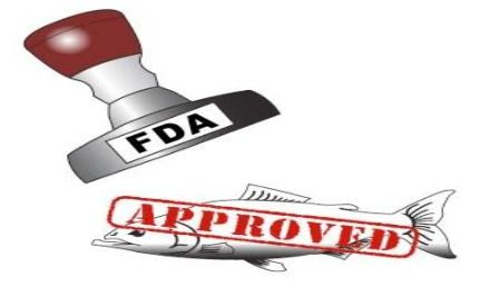 FDA Caught Hiding The Truth About GMO Salmon