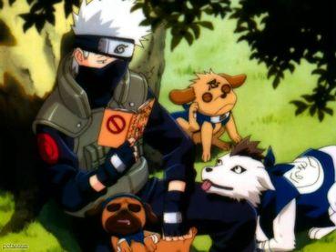 Naruto Shippuden 267 Subtitle Indonesia