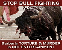 Image result for ban bullfighting
