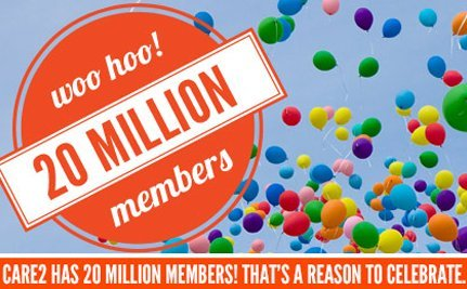 20 Million Member Giveaway – Winners!