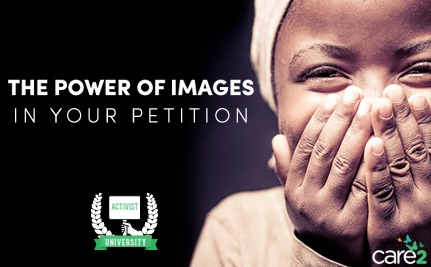 Tip: Utilizing the Power of Images in YOUR Petition