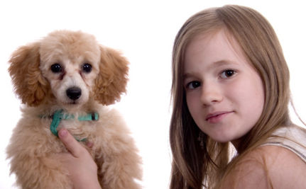 Animal Abuse By Children And Teens Is Escalating