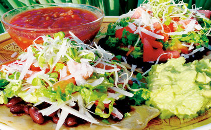 Belgian City of Ghent Sets Vegetarian Example