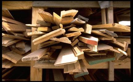 Green Lumber?