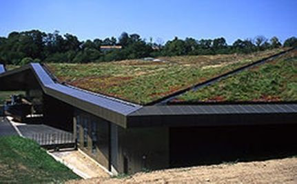 Study Shows Green Roofs Capture Carbon