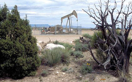 Success! Salazar Announces Investigation of Shady Bush Administration Oil Shale Deals