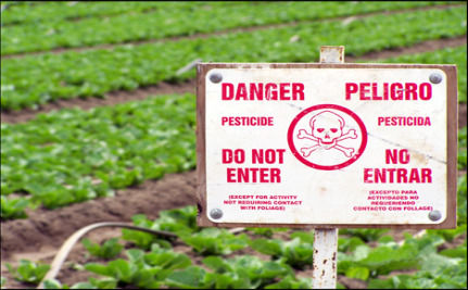 Pesticides Are Everywhere: New iPhone App Helps You Avoid Them