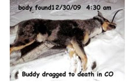 Dragged to Death Behind a Truck: Demand Justice for Buddy