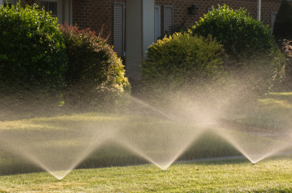 City Sues Homeowner for Not Wasting Enough Water on Lawn