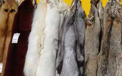 Spring Cleaning? What to do with Grandma's Fugly Old Furs