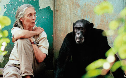 A Conversation with Dr. Jane Goodall