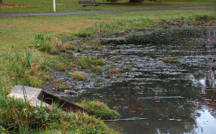 U.S. Cities Fight Back Against Water Pollution