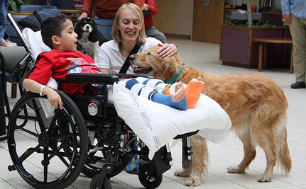 Animal-Assisted Therapy Can Be A Please for Patients and Pets