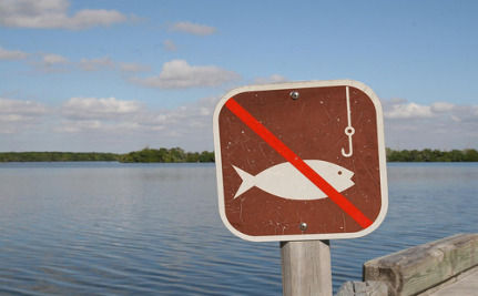 Fishing Banned In Oil-Affected Portion Of Gulf Of Mexico