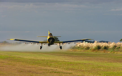 Pesticides May Increase Risk of ADHD in Children