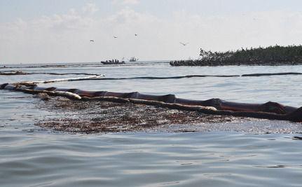 Obama Commits To Long-Term Restoration Of Gulf Coast