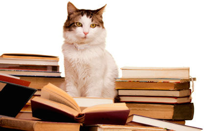 Animal Rights Reading: A Top Ten Summer Book List