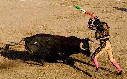 Care2 and WSPA Celebrate New Bullfighting Ban