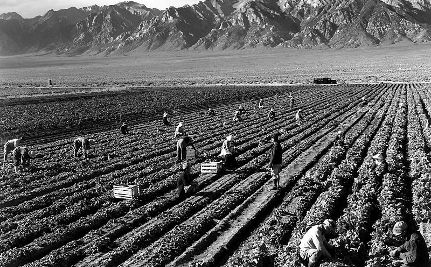 Support Farm Workers this Labor Day