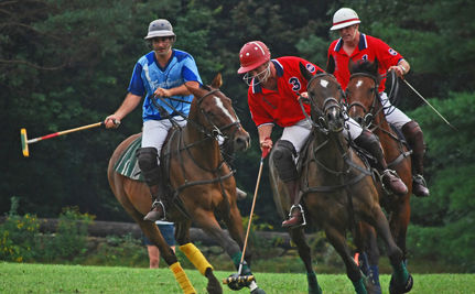 Prince Harry's Polo Horse Injured … But the Prince Kept Playing