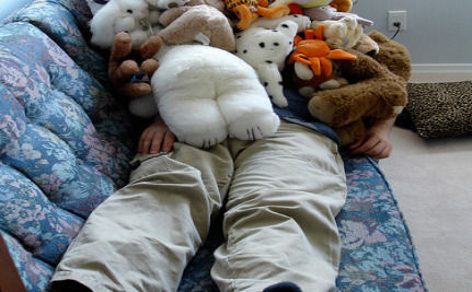 Mentally Ill Stuffed Animals? Believe It