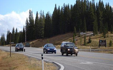 California Tracks Roadkill Stats