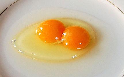 Congress Questions DeCoster Egg Execs at Salmonella Hearing