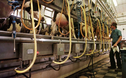 Dairy Companies Hoping to Lower Greenhouse Gas Emissions