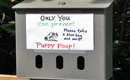 Lights Powered by Dog Poop! (VIDEO)