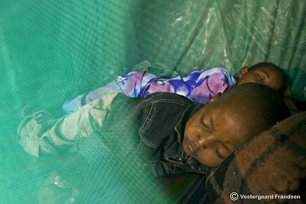 Low Tech Bed Net Aims High in the Fight Against Malaria