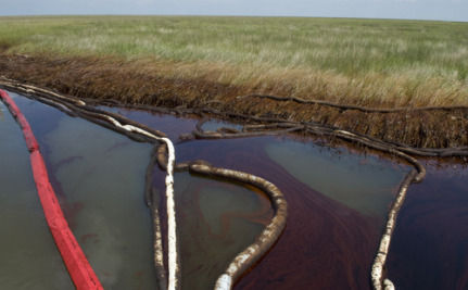 Six Months After The Gulf Oil Spill, Has Any Progress Been Made?