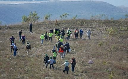 "Activists Risk Arrest To Plant Trees On ""Reclaimed"" Mining Site"