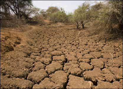 2011 May Ring in Record Droughts
