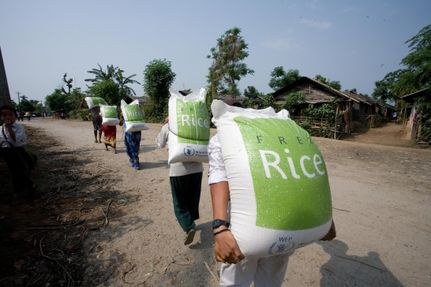 Give Thanks by Giving Free Rice!