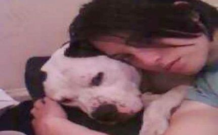 Justice for Gooch: Service Dog Killed by Groomer