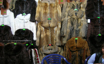 Norway Designers Ban Fur