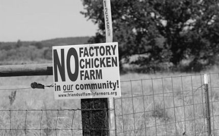 Poll Finds N.C. Residents Don't Want Factory Poultry Farm