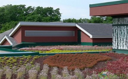 Green Roofs on Chicken Coops to Highrises