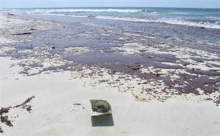 Obama's Budget Includes $27 Million For Gulf Coast Restoration