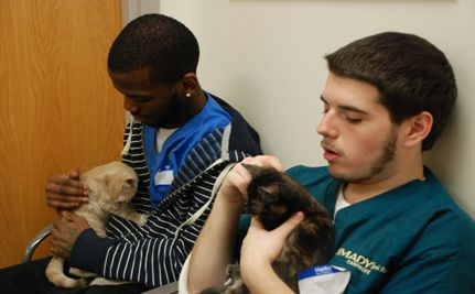 Homeless Youth Help Homeless Animals