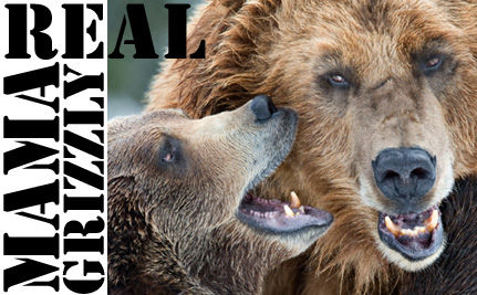 Real Mama Grizzlies: Let's Put the Palin Title Where It Belongs!