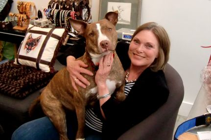 Rescue of the Week: Heroine Journeys 300 Miles for Scalded  Dog